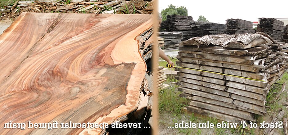 wide wood slabs for sale