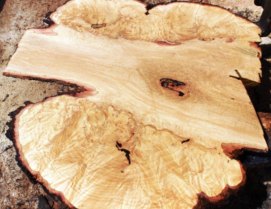 oak burl for sale