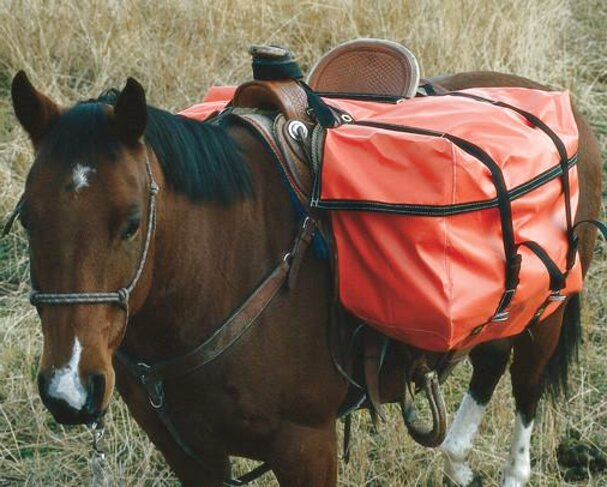 saddle panniers for sale