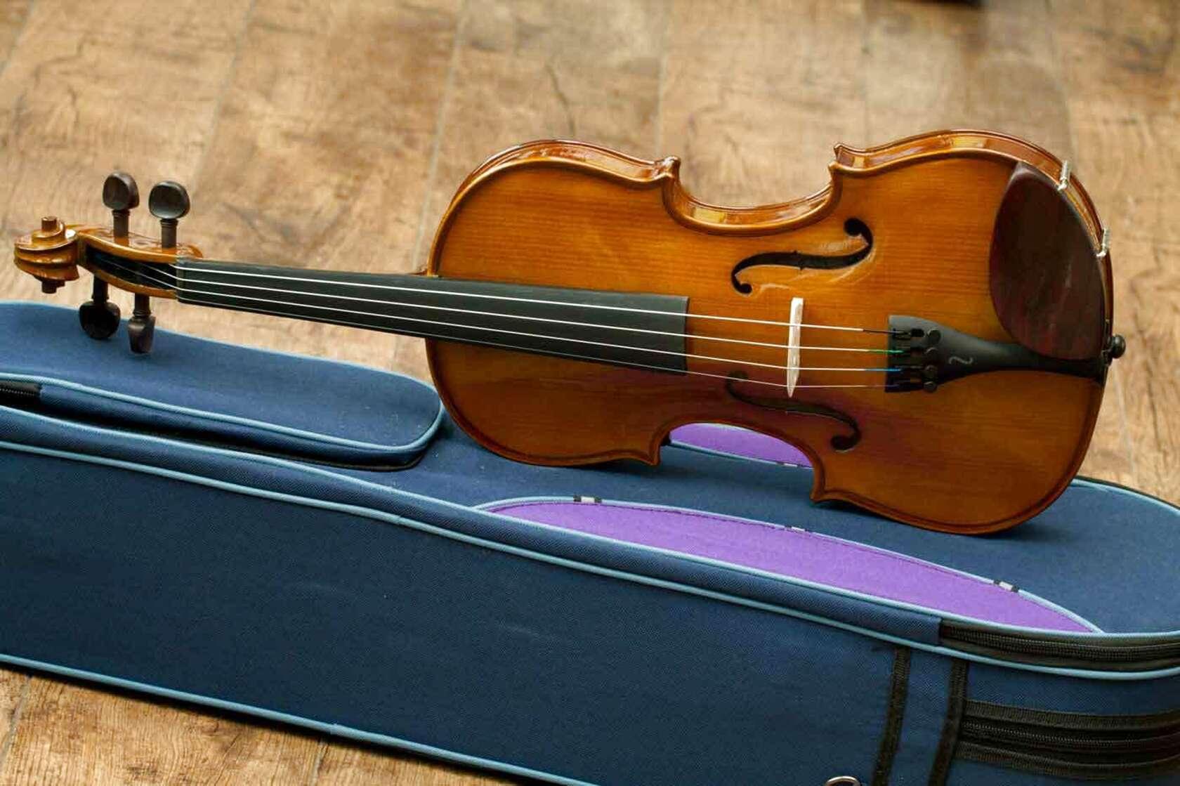 stentor violin for sale